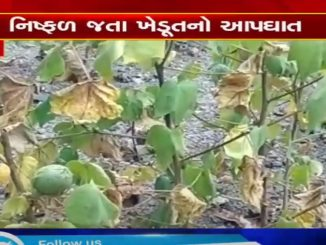 Farmer commits suicide over fear of crop failure