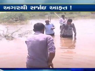 Bhavnagar: Farmers in Bhal region suffer massive crop loss due to excessive rainfall