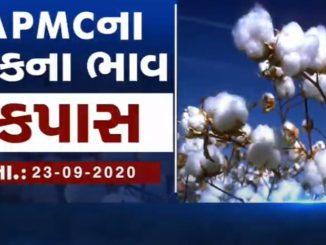Various APMC prices of Gujarat 23rd September