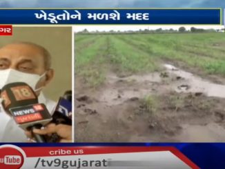 Dy.CM Nitin Patel on relief of crop loss caused due to heavy rain in the state