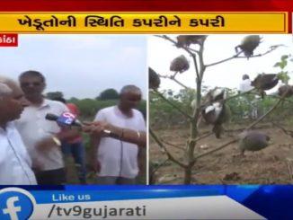 https://tv9gujarati.in/sabarkantha-jill…n-vadtar-ni-maag/
