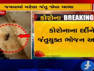 Insects found in Corona patients' food at Covid hospital, Rajkot