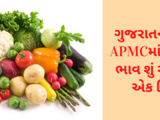 What are the prices of various vegetables in different APMCs in Gujarat? Learn in one click