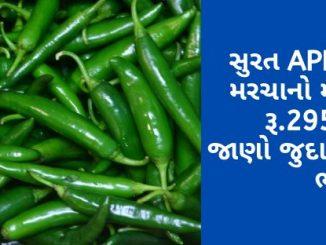 suratna APMCma lila marchano mahatam bhav rupiya 2950 rahyo jano juda juda pakona bhav