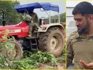 After retirement, Dhoni focuses on tomatoes and milk business, see what his farm is likefocuses on the tomato and dairy business, see what his farm looks like.