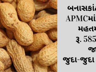 https://tv9gujarati.com/news-media/banaskathana desa apmcma magafalina mahatan bhav ru.5855 rahya jano judajuda pakona bhav-191570.html
