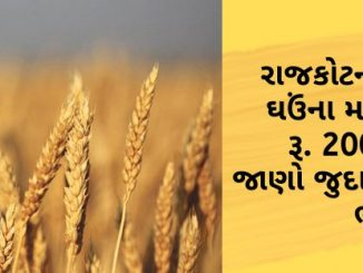The maximum price of wheat in Rajkot's APMC was Rs. 2000, know different crops