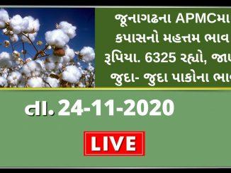 junagathna apmcma kapasno mahatam bhav rupiya 6325 rahyo jano juda juda pakona bhav
