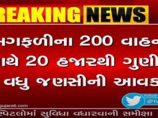Income of 20,000 quintals of groundnut at Hapa Martyard in Jamnagar